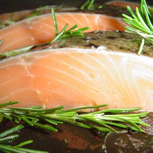 kochkurs fisch auf die leichte art