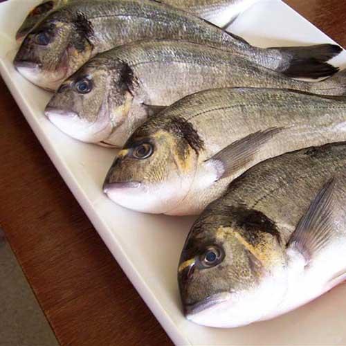 kochkurs keine angst vor ganzen fischen